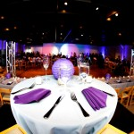 Wedding and event Uplighting Las Vegas San Diego Los Angeles Orange County Inland Empire San Bernadino