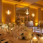 Gobo Pattern Wash & Wedding Uplighting, Uplights, Centerpiece Pin Spot Lighting